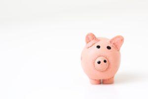 Financial literacy digitalAMN